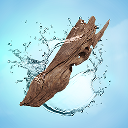 Aquatic Wood