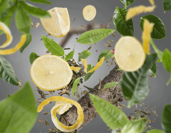 Anti-odour For Kitchen - Green & zesty