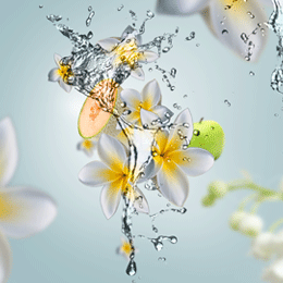 Aroma Happy Aquatic Freshness