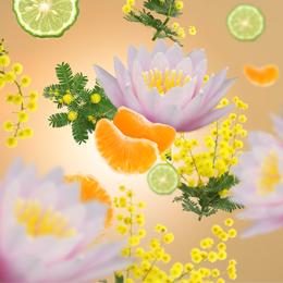 Aroma D-Stress Sweet Fruits