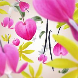 Aroma Love Voracious Flower