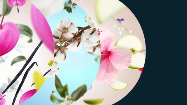 Your favorite Spring fragrances