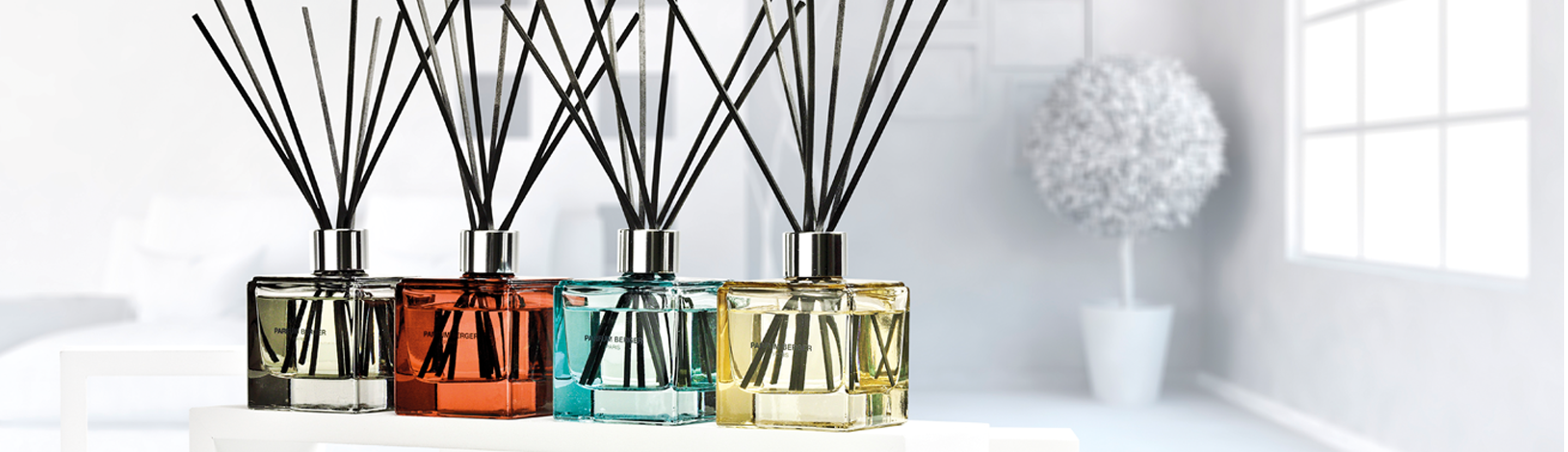 Anti-odour collection