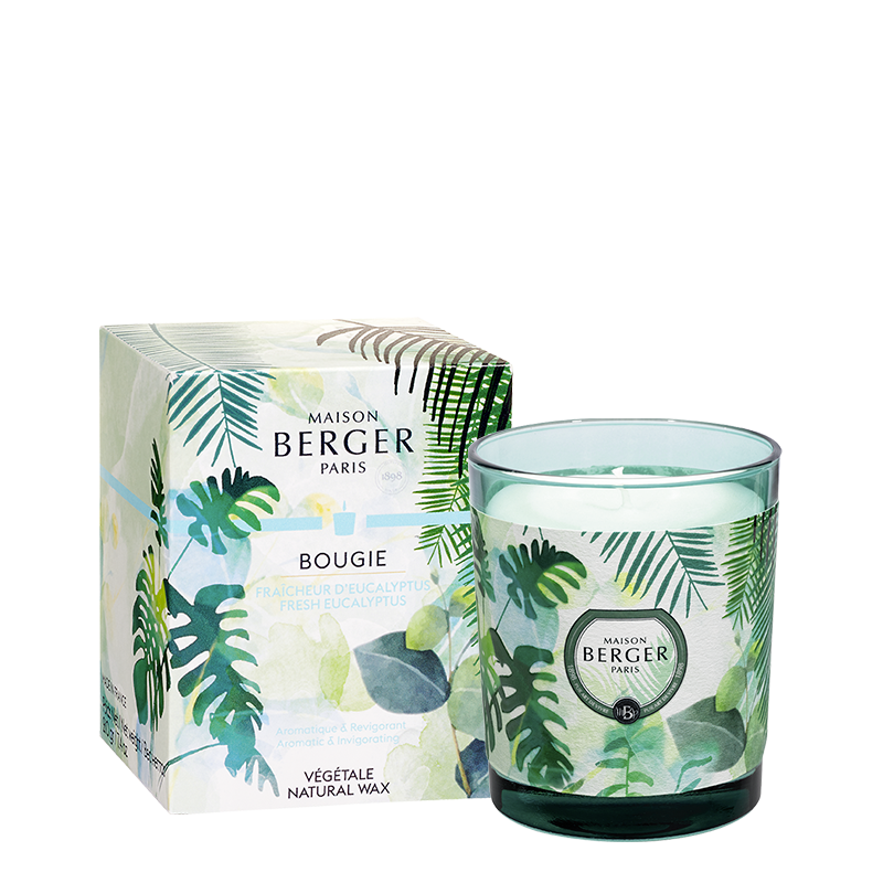 Scented Candle Fresh Eucalyptus