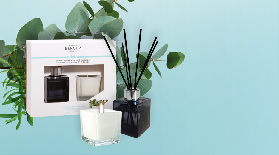 Fresh Eucalyptus Mini Cube Scented Bouquet & Mini Scented Candle Duo
