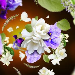 Musk Flowers